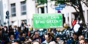 """A placard being held by a man at a demonstration that reads: """"It's not easy being green!"""" Kermit the frog"""