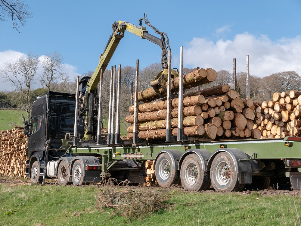 A lorry used for transporting felled trees is in a field and the back is being loaded with tree trunks from a large stack using a hydraulic grapple